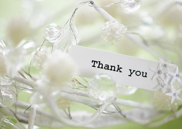 SGVegan_Thankyou_2013
