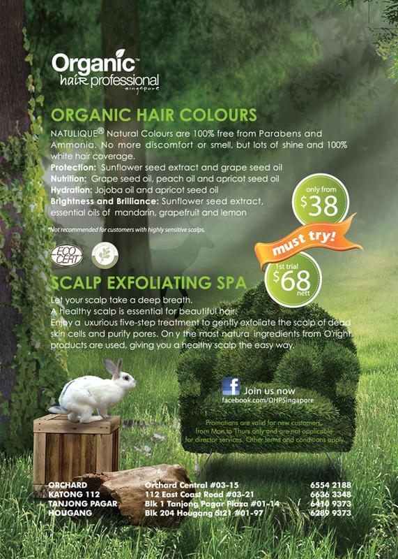 Organic Hair Salon : SGVegan_The Organic Hair Salon Singapore