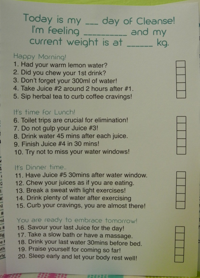 SGVegan_hic'Juice My Cleanse Journal checklist