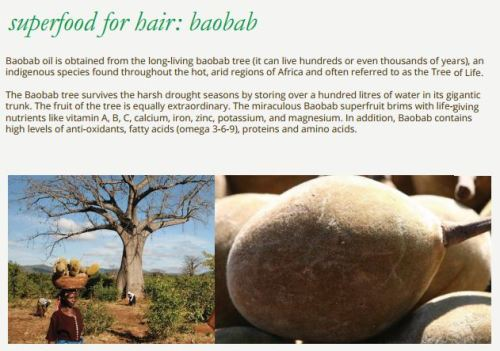 SGVegan_Africa Organics Baobab Superfood